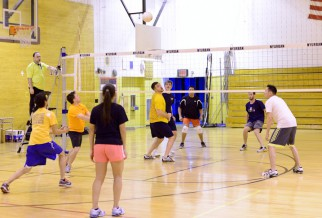 Open Play Volleyball Game