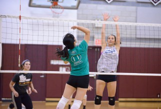 Player prepares to block in volleyball league game.