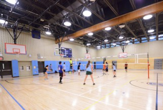Nyc volleyball league game at Brandeis hs