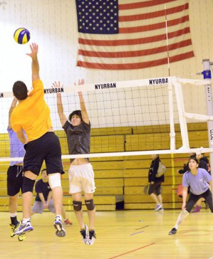 players in america's #1 Volleyball league